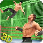 Tag Team Wrestling Superstars 2019: Hell In Cell 1.1.1 APK (MOD, Unlimited Money)