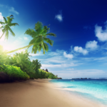 Beach Live Wallpaper 6.0 APK (Premium Cracked)