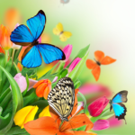 Butterfly Live Wallpaper 6.0 APK (Premium Cracked)