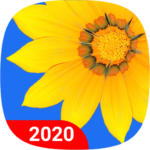 Gallery 2.28 APK (Premium Cracked)
