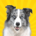 Real Pets™ by Fruwee 297 APK (MOD, Unlimited Money) 297