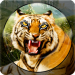 Forest Animal Hunting 2018 – 3D 1.2.3 APK (MOD, Unlimited Money)