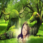 Garden Photo Frame 4.4 APK (Premium Cracked)