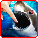 Shark smasher 1.0.6.86 (MOD, Unlimited Money)