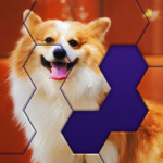 Block Hexa Jigsaw Puzzle 1.5.0 (MOD, Unlimited Money)