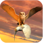 Clan of Owl 1.1 APK (MOD, Unlimited Money)
