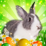 Hidden Object: Easter Egg Hunt 1.1.85b APK (MOD, Unlimited Money)