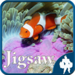 Sea Life Jigsaw Puzzles 1.9.17 APK (MOD, Unlimited Money)