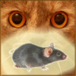 Mouse on the Screen for a Cat – Game for cats 22.0 APK (MOD, Unlimited Money)