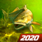 My Fishing World – Realistic fishing 1.14.94 APK (MOD, Unlimited Money)
