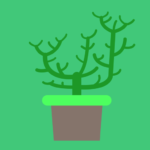 Plant physiology 80.80.20 APK (MOD, Unlimited Money)