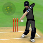 Smashing Cricket – a cricket game like none other 3.0.8 APK (MOD, Unlimited Money)