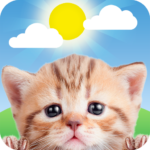 Weather Kitty – App & Widget Weather Forecast 5.3.3 APK (MOD, Unlimited Money)