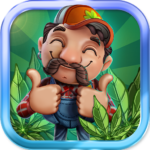 CannaFarm – Weed Farming Collection Game 1.8.706 APK (MOD, Unlimited Money)