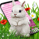 Cute bunny live wallpaper for android 18.5 MOD