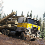 Cargo Truck Simulator Offroad: Truck Driving Games  MOD (Unlimited Money) 1.1.9